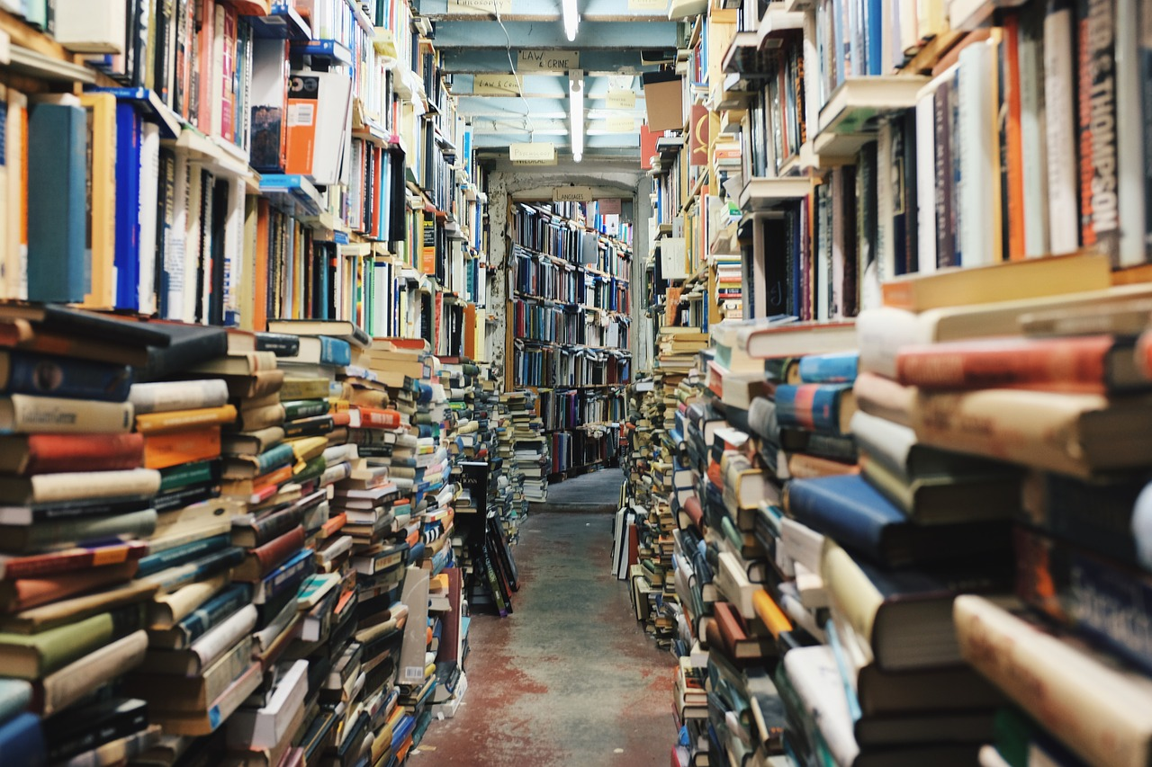 vintage used bookstore stock